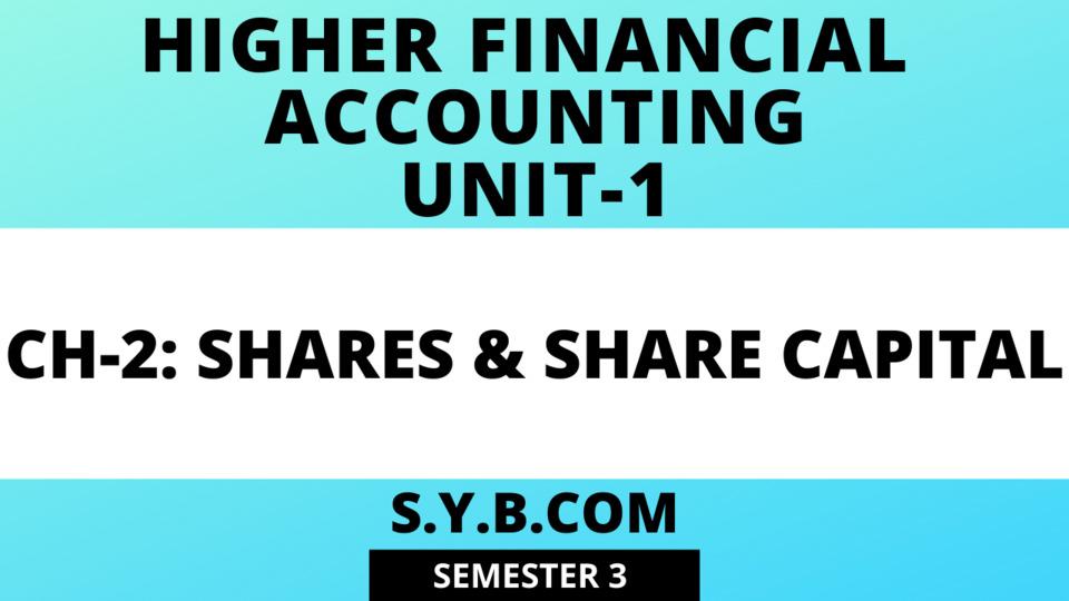 SY Share Capital