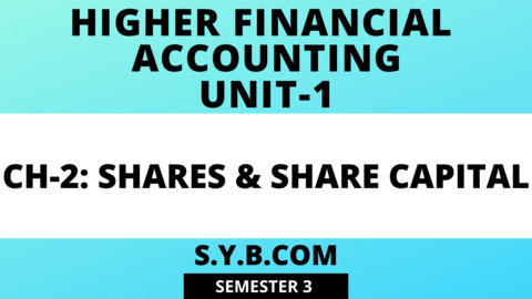 SY Share Capital