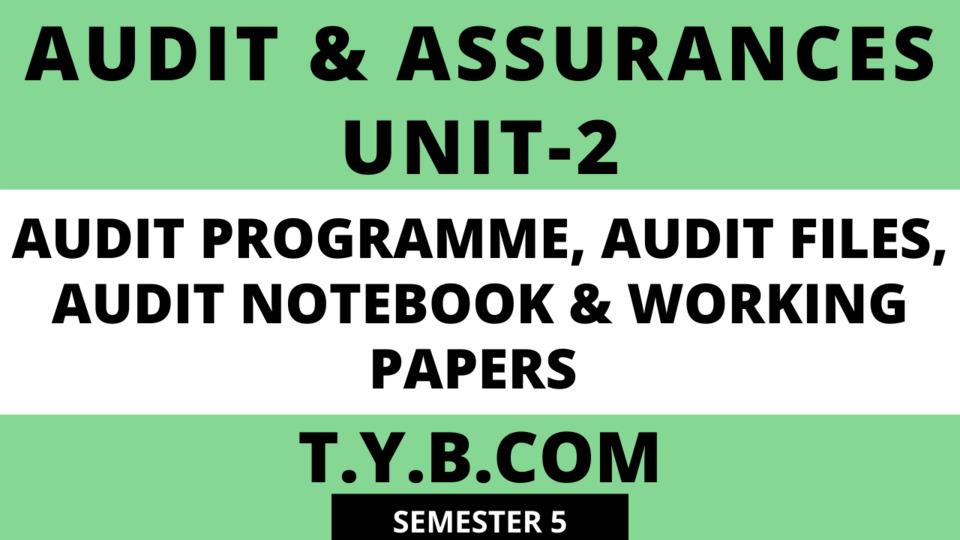 Unit-2 AUDIT PROGRAMME, AUDIT FILES, AUDIT NOTEBOOK & WORKING PAPERS