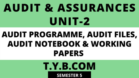 Unit-2 AUDIT PROGRAMME, AUDIT FILES, AUDIT NOTEBOOK & WORKING PAPERS